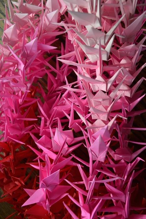 Pink To Dark Pink
